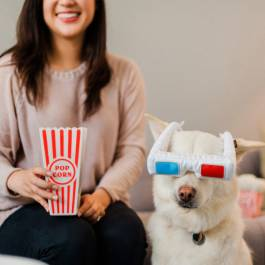 HONDENSPEELGOED P.L.A.Y. Hollywoof Collection - 3D-bril