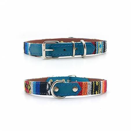 turquoise halsband hond